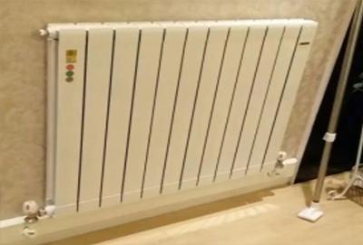 贵阳尚菱铜铝复合散热器
